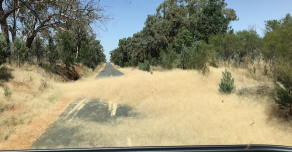 Tumbleweed Road Hazards